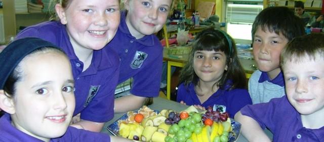health-promoting-school-